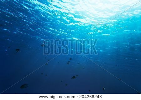 Sea bottom with blue water wave splash background
