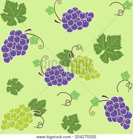 grape pattern saemless green backgrouds vectors image