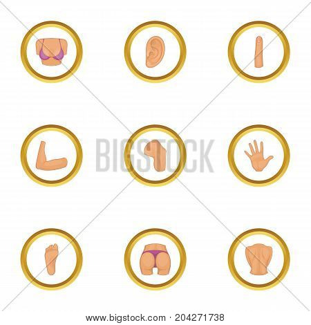 Body parts icons set. Cartoon style set of 9 body parts vector icons for web design
