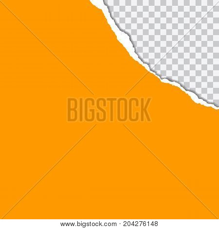 vector realistic illustration of orange torn paper with shadow on transparent background with frame for text
