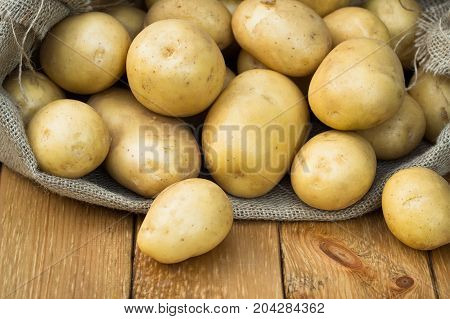 Potato. Fresh Young Yellow Potatoes In Sackcloth On Wooden Board Close Up. Healthy Food.