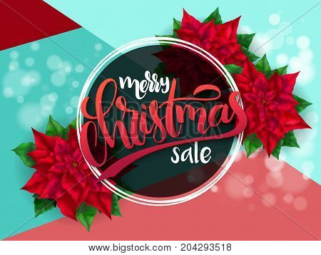 Vector illustration of banner with hand lettering label - merry christmas sale - with poinsettia flowers and shiny flares.