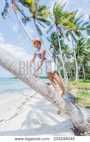 Young happy gir sits on a palm tree in a tropical beach
