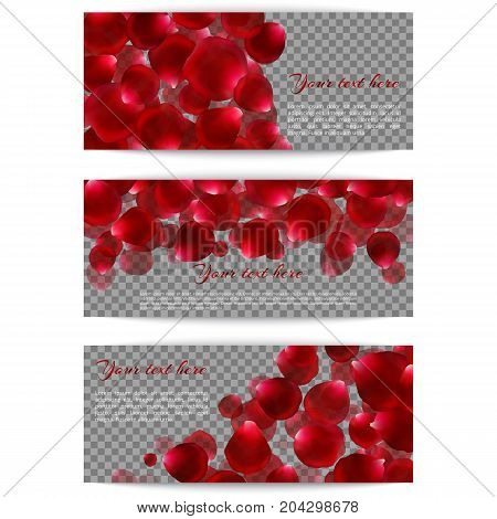 A set of banners with red flying rose petals on a transparent background. Romantic design for festive decoration. Vector illustration