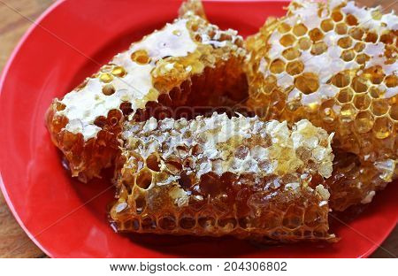 Honeycomb closeup. Honeycomb lie on a red plate on a wooden surface.