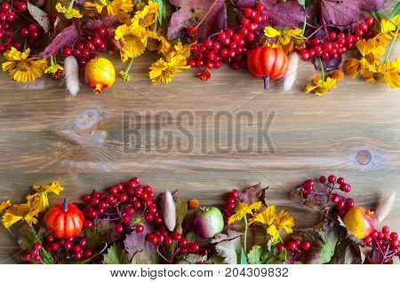 Autumn background. Seasonal autumn nature berries autumn pumpkins apples and autumn flowers on the wooden background. Autumn still life, free space for text.Autumn background