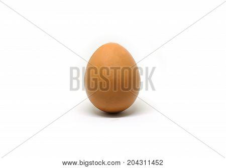 White Eggs White Background, White Eggs Background for Design