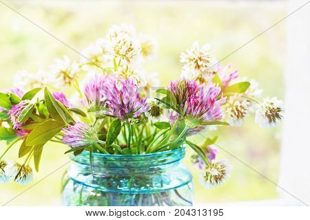 Clovers in the glass jar against a background of the window
