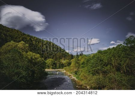 the river is among the mountains blue sky white clouds green forest Carpathian Mountains