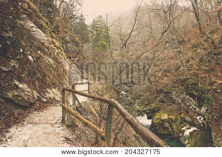 Natural sidewalk in to the wild with wooden handrail beside stone foothill and cliff stream in Bled at Slovenia, Landscape of small way near mountain to deep forest with brown trees background in winter