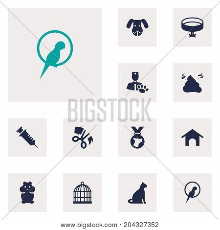 Collection Of Home , Bird , Neckband Elements.  Set Of 12 Animals Icons Set.