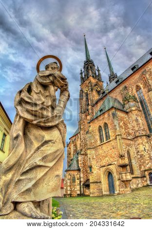 Statue at the Cathedral of Saints Peter and Paul in Brno - Moravia, Czech Republic