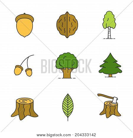 Forestry color icons set. Acorns, walnut leaf, birch, oak, fir trees, stump with axe. Isolated vector illustrations