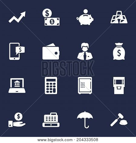 Collection Of Save Money, Money, Piggy Bank And Other Elements.  Set Of 16 Finance Icons Set.