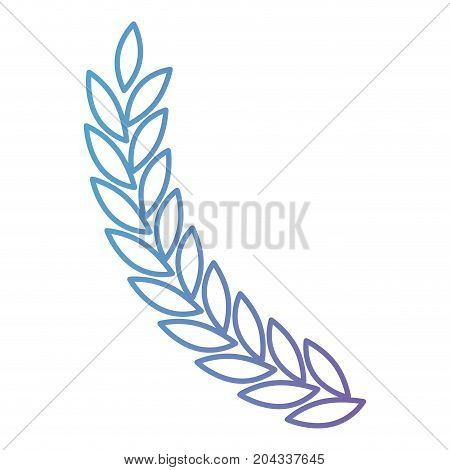 olive branch ramification in color gradient silhouette from purple to blue vector illustration