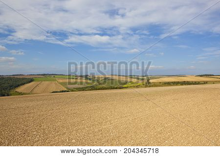 Chalky Soil And Scenery