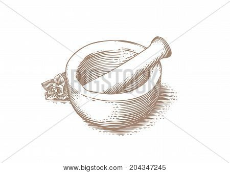 Mortar bowl and pestle with fresh green oregano