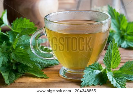 A cup of nettle tea on a wooden table with fresh stinging nettles in the background