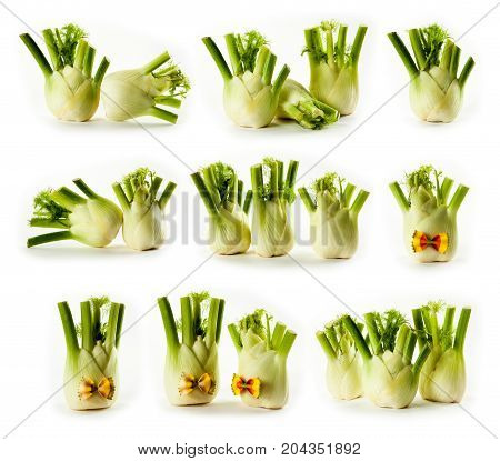 composite with fennel isolated on white background studio photo