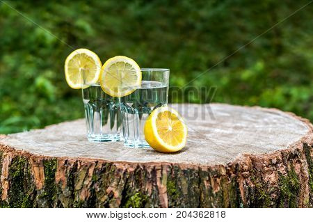 The slices of lemon on a two glasses of water on wooden stump. Green background outdoor