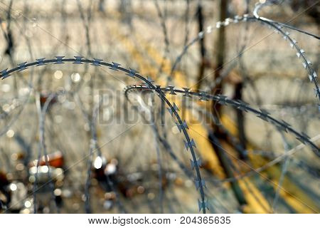 Barbed Tape Or Razor Wire