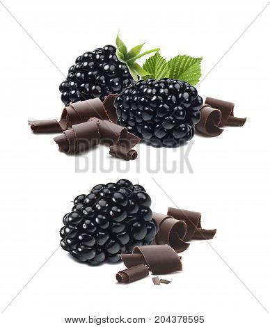 Black berry and chocolate curls isolated on white background as package design element