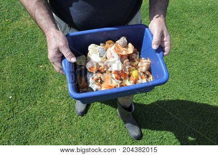 Hands Carry A Container Full Of Domestic Food Waste