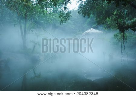 Thatched Cottage With Fog And Trees