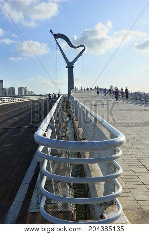 Harp Bridge In Xiamen Garden Expo