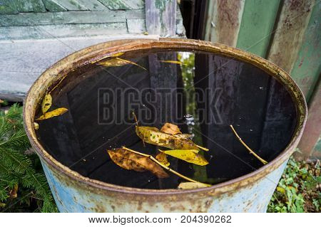 a leaf on the water, an autumn leaf fall, a barrel with autumn leaves
