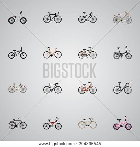 Realistic Competition Bicycle, Timbered, Old And Other Vector Elements
