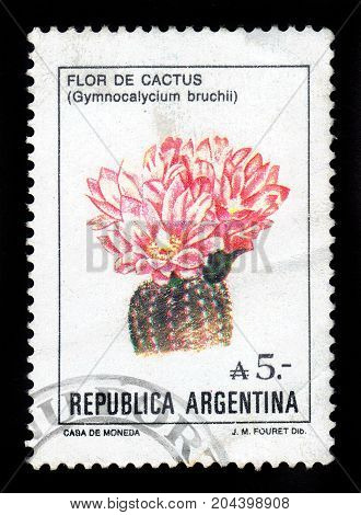 ARGENTINA - CIRCA 1987: a stamp printed in the Argentina shows gymnocalycium bruchii, cactus from the genus Gymnocalicium, name is given in honor of the argentine photographer and entomologist Carlos Bruch, series, circa 1987