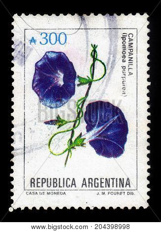 ARGENTINA - CIRCA 1985: a stamp printed in the Argentina shows ipomoea purpurea, known as the morning-glory or purple morning glory, series, circa 1985