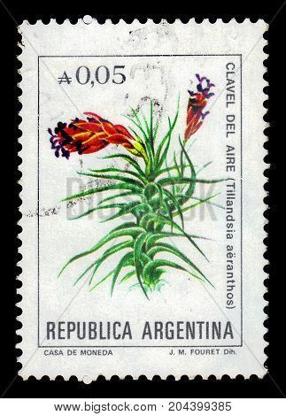 ARGENTINA - CIRCA 1985: a stamp printed in the Argentina shows tillandsia aeranthos, flowering plant is a species in the genus Tillandsia, series, circa 1985