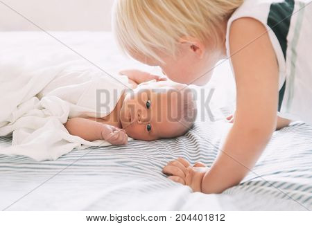 Brother kissing his little sister. Child toddler boy and newborn baby girl. Concept of family life parenthood childhood. First and second child together in family.