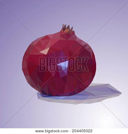 Illustration of a pomegranate on a lilac background