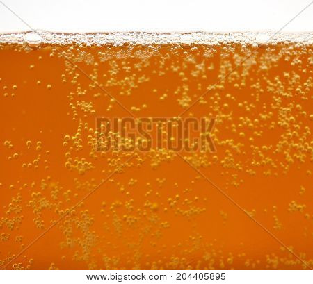 Freshly served beer with foam and bubbles