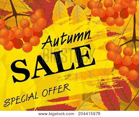Sign autumn sale. Background with rowan berries and leaves fall. Vector illustration.