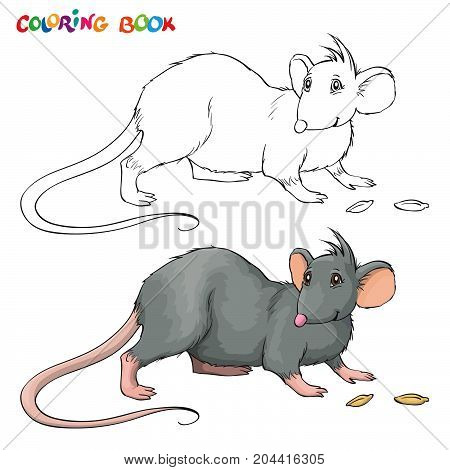 Vector Coloring book or page for children with rat.
