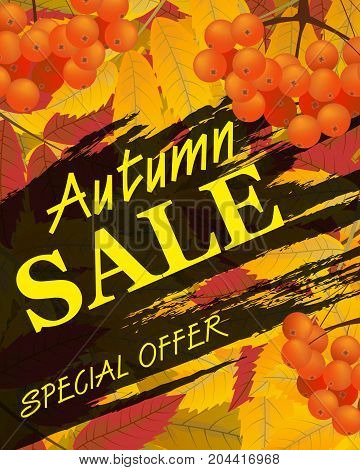 Sign autumn sale. Vertical background with rowan berries and leaves fall. Vector illustration.