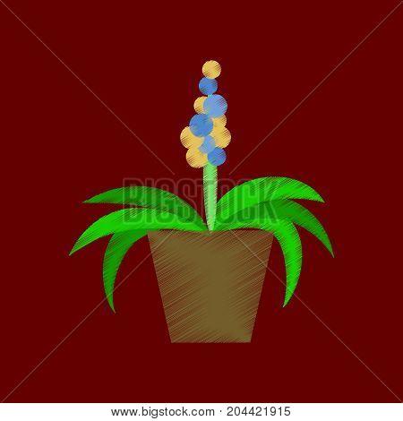 flat shading style icon hyacinth blossom botany