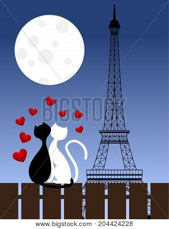Couple black and white cats fall in love on background of night sky with moon and Eiffel tower. Valentines day greeting card. Vector illustration.