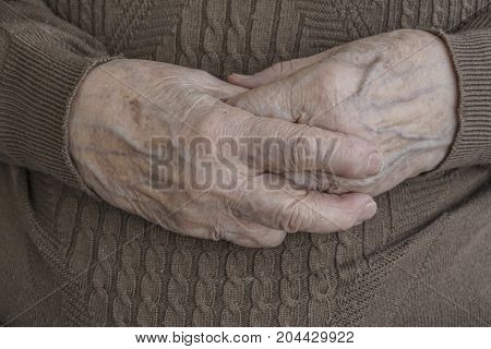 Wrinkled Hands Of A Senior Person