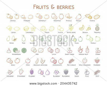 Outline colorful linear web icon set - Fruit & berries Thin bold Line food Icons For logo label Orange banana strawberry plum citrus litchi cherry mango pear kiwi lemon tropical big collection