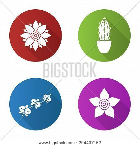 Flowers flat design long shadow glyph icons set. Lotus, daffodil, orchid, branch, cactus in flowerpot. Vector silhouette illustration