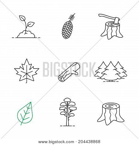 Forestry linear icons set. Pine cone and tree, growing sprout, deforestation, stumps, fir forest, maple leaf, firewood. Thin line contour symbols. Isolated vector outline illustrations