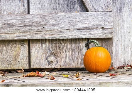 Closeup Of Small Orange Pumpkin Sitting Outside Wooden Barn Door On Porch With Autumn Leaves Strewn