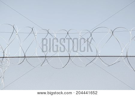 Barbed Wire In The Prison In The Background Of The Grey Sky