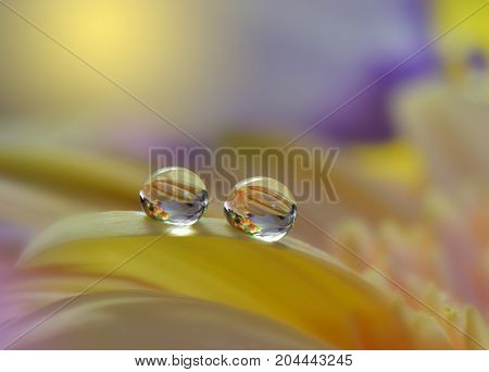 Abstract macro photo with water drops. Tranquil abstract closeup art background. Artistic Background for desktop. Pastel Colors.Transparent and clear water beads.