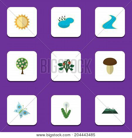Flat Icon Ecology Set Of Floral, Champignon, Tree And Other Vector Objects